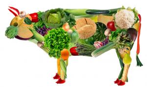 dieta vegetariana alimentat nutricionista barcelona